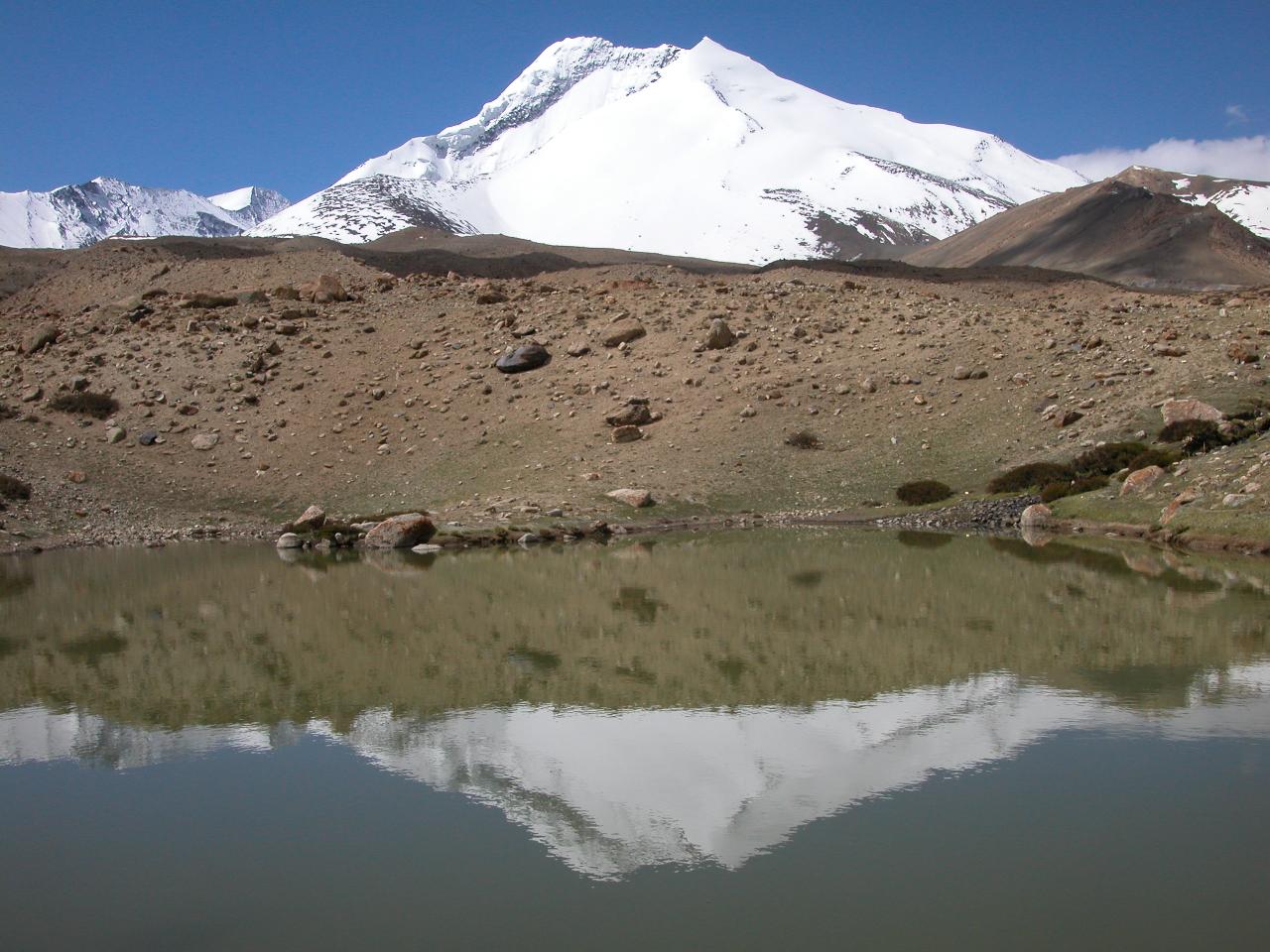 Markha Valley Ladakh